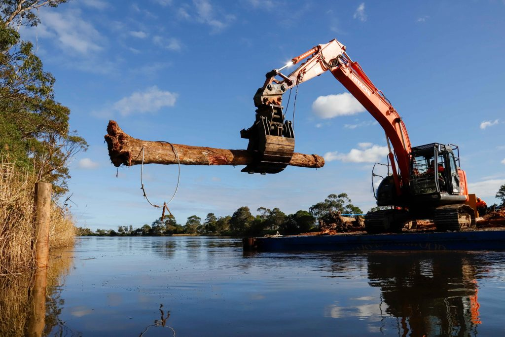 An excavator on a barge holds a log in its arm in readiness to install it onto the Brodribb River.